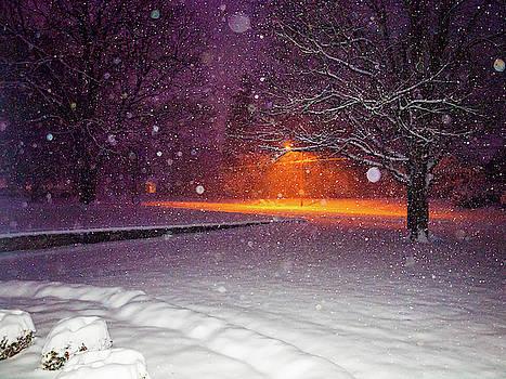 Morning Snow by Randy Sylvia