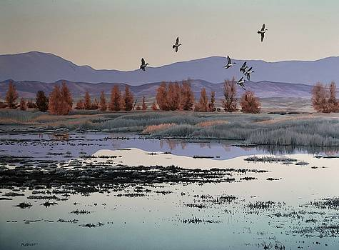 Morning Sprig by Peter Mathios