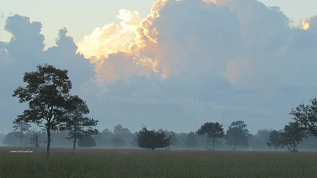 Morning Sunrise with Fog by Tambra Nicole Kendall