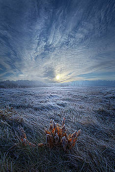 Morning Time Blues by Phil Koch
