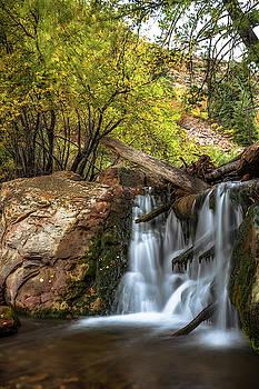 Morning Waterfall by Marybeth Kiczenski