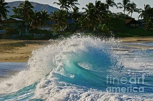 Morning Wave at Makaha two by Craig Wood