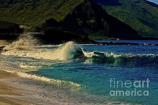 Morning Wave Keawaula Beach by Craig Wood
