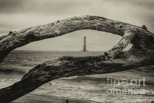 Dale Powell - Morris Island Lighthouse - Deadwood View in Sepia