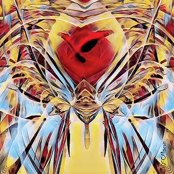 Moth Apple by Steven Macon
