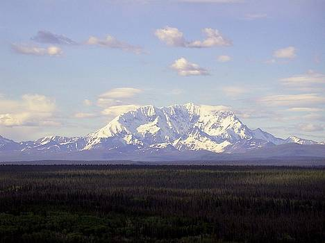 Mount Drum Alaska by Mark Duehmig
