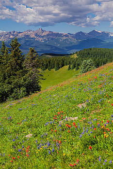 Mount of the Holy Cross from Shrine Ridge by Fred J Lord
