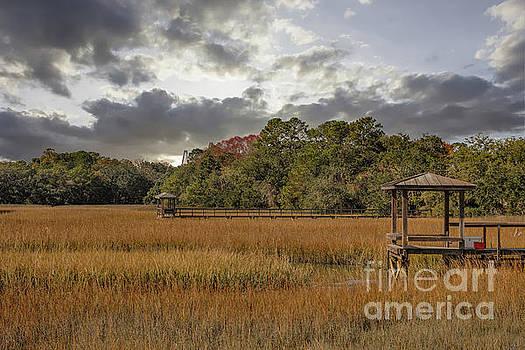 Dale Powell - Mount Pleasant Winter Salt Marsh