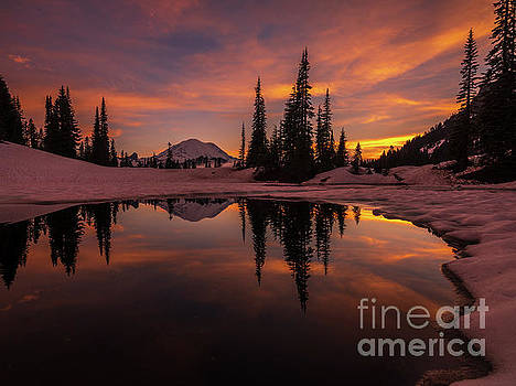 Mount Rainier Photography Golden Sunset Reflection by Mike Reid
