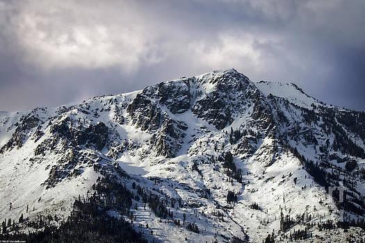 Mount Tallac Snow by Mitch Shindelbower