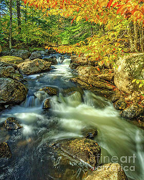 Mountain Brook Fairgrounds Road Bradford New Hampshire by Edward Fielding
