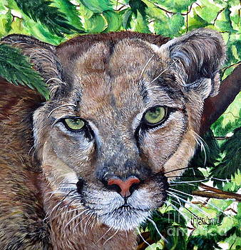 Mountain Lion Portrait by Marilyn McNish
