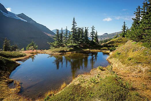 Mountain Pond by Tim Newton