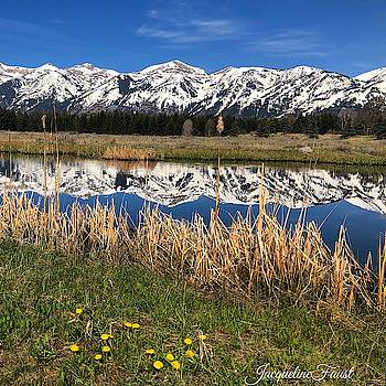 Mountain Reflection by Jacqueline Faust