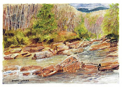 Mountain Stream by Barry Jones