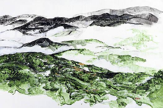 Mountains at Shenadoah 2 201901 by Alyse Radenovic