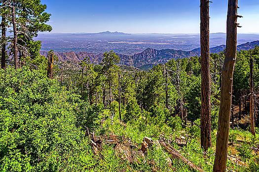 Mt Lemmon Vista h1910 by Mark Myhaver
