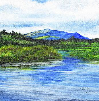 Mt. Monandnock From Scott Brook by Paul Gaj