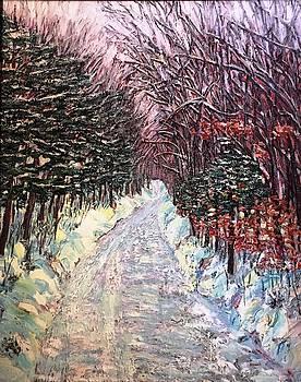 Mt. Tom Winter Road by Richard Nowak