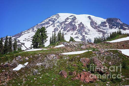 Mt Rainier  by Sharon Seaward