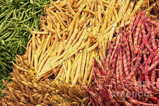 Bob Phillips - Multi-Colored Beans