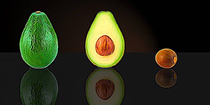 My Avocado Dream by Paul Wear