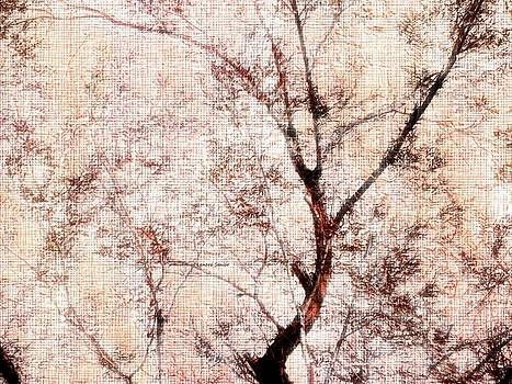 My Impression of a Tree by Lenore Senior