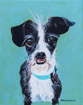My Lovable dog by Katrina Nixon