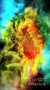 My Sunshine 2 by Janie Johnson