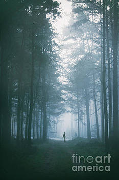 Mystery In The Mist by Evelina Kremsdorf