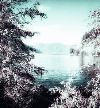Mystic Porteau Cove  by Connie Handscomb