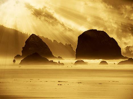 Mystical Beach by Micki Findlay