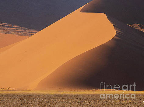 Namibia Curves of Sand by Mike Reid