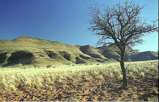 Namibia by Susie Rieple