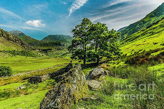 Nant Ffrancon Valley by David MM Williams