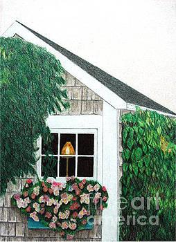 Nantucket Window by Glenda Zuckerman