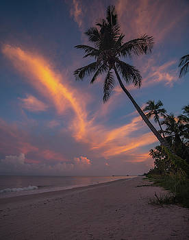 Naples Palms Sunrise by Joey Waves