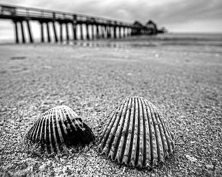 Toby McGuire - Naples Pier Seashells Naples FL Florida Black and White
