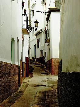 Narrow Street in Spain by Alan Socolik