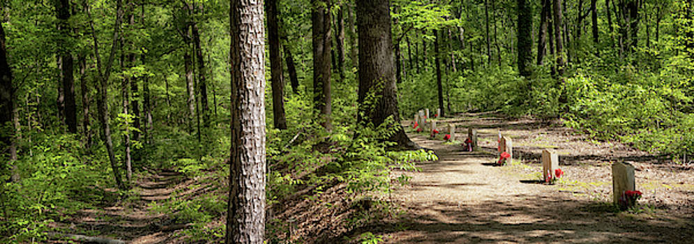 Natchez Trace - 13 Graves Panorama by Susan Rissi Tregoning