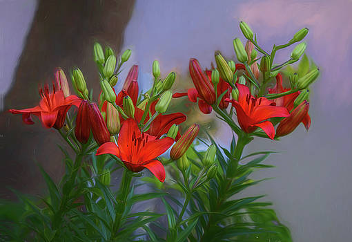 Naturally Orange Asiatic Lilies by Mary Lynn Giacomini