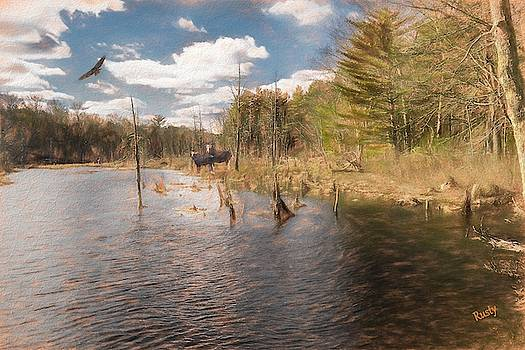 Nature composite photograph. by Rusty R Smith