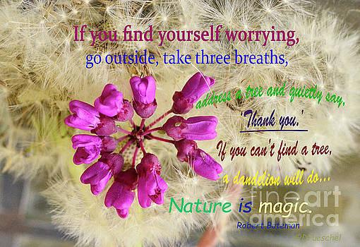 Nature is Magic by Debby Pueschel