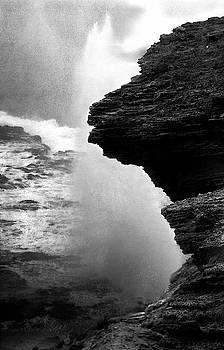 Nature's Fury by Alina Oswald
