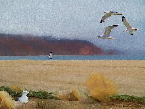 Naval Base Ventura County - Point Mugu by Jennifer Stackpole