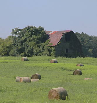 Cathy Lindsey - NC Hay Rolls and Barn 3