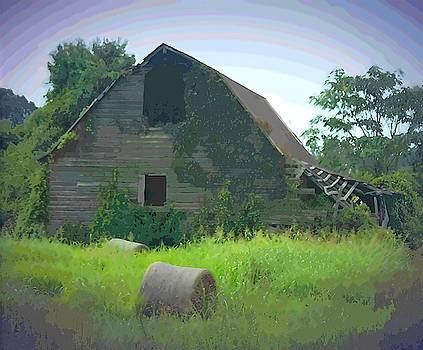 Cathy Lindsey - NC Hay Rolls and Barn 4