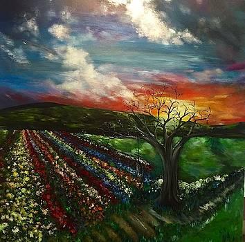 New Day by Sabrina Logan