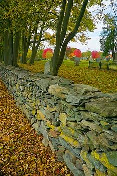New England Stone Wall 2 by Nancy De Flon