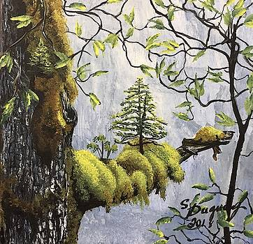 New Life  by Sharon Duguay